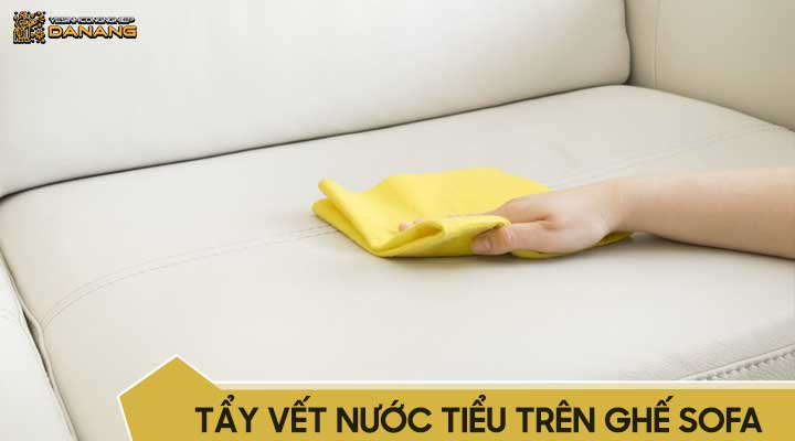 Tẩy vết nước tiểu trên ghế sofa